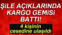 Gemlik'ten kalkan gemi İstanbul'da battı