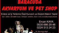 BARACUDA  AKVARYUM VE PET SHOP